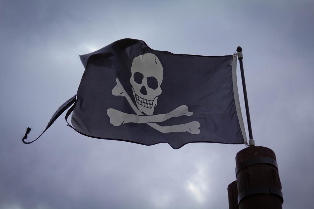 Skull And Cross Bones Flag
